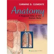 Anatomy A Regional Atlas of the Human Body