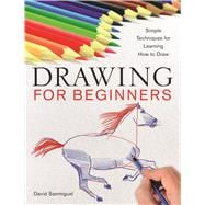Drawing for Beginners Simple Techniques for Learning How to Draw