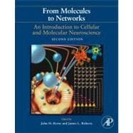 From Molecules to Networks