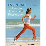 Essentials of Human Anatomy and Physiology 11th Edition