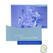 The Practice Of Macro Social Work (Revised)