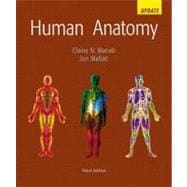 Human Anatomy Update