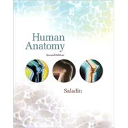 Human Anatomy