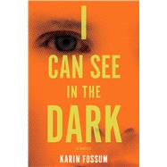 I Can See in the Dark 9780544483989R