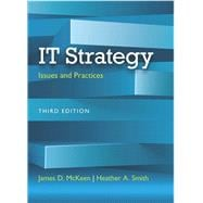 IT Strategy Issues and Practices