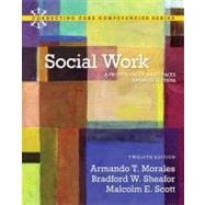 Social Work A Profession of Many Faces (Updated Edition)