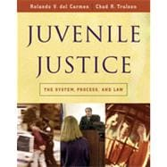 Juvenile Justice: The System, Process and Law, 1st Edition