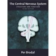 The Central Nervous System Structure and Function