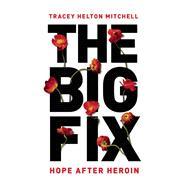The Big Fix 9781580056038R