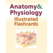 Anatomy and Physiology Illustrated Flashcards