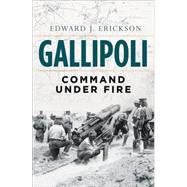 Gallipoli Command Under Fire