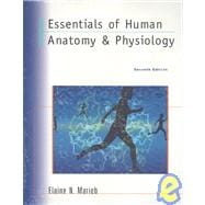 Essential Human Anatomy and Physiology
