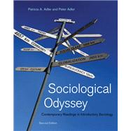 Sociological Odyssey Contemporary Readings in Introductory Sociology