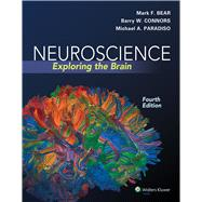 Neuroscience Exploring the Brain